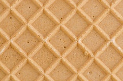 Waffle texture Royalty Free Stock Photo
