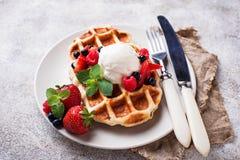 Waffles Бельгии с ягодами и мороженым стоковые фото