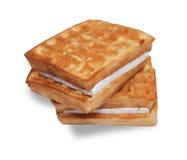 2 waffles при изолированная сливк Стоковые Фото