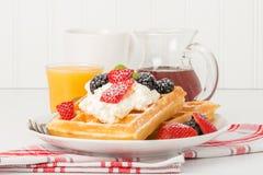 Waffles с ягодами стоковые фото