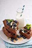 Waffles шоколада с молоком Стоковые Фото
