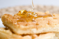 Waffles. A breakfast of Waffles dripping with honey Stock Photography