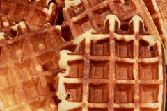 Waffles basket Royalty Free Stock Images