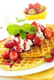 Waffles belgas imagem de stock