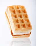 Waffles belgas Fotos de Stock Royalty Free