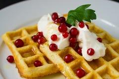 Waffles belgas com creme e o corinto vermelho Imagens de Stock Royalty Free