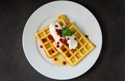 Waffles belgas com creme e o corinto vermelho Fotografia de Stock