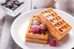 Waffles belgas com framboesa, mel e polvilhado com o powdere Foto de Stock Royalty Free