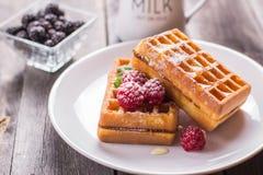 Waffles belgas com framboesa, mel e polvilhado com o powdere Fotografia de Stock Royalty Free