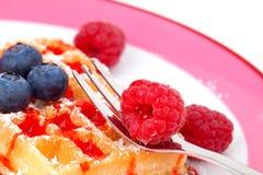 Waffles belgas com framboesas Fotos de Stock