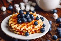 Waffles belgas com mirtilo e xarope Imagens de Stock