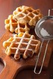 Waffles belgas polvilhados com o açúcar de crosta de gelo imagens de stock