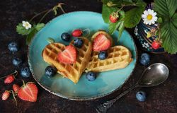 Waffles with berries Flat lay. Tasty waffles with berries and honey, Top view stock image
