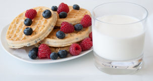 Waffles with berries and milk Stock Image