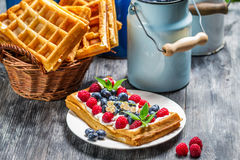 Waffles with berry fruit and whipped cream Stock Images