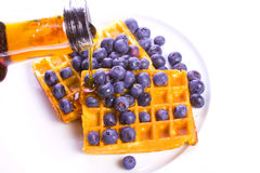 Waffles, blueberries and syrup. Maple syrup poured on blueberry sprinkled waffles Royalty Free Stock Photo