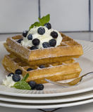 Waffles with Blueberries and Whipped Cream. Belgium waffles topped with whipped cream, fresh blueberries and dusted with confectioners sugar. White plate sitting stock image