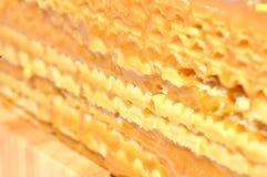 Waffles cake with caramel Stock Images