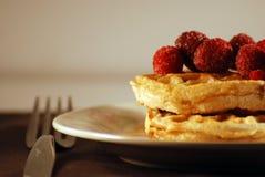 Waffles cobertos com Rasberries Fotografia de Stock