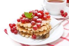 Waffles com corinto vermelho, açúcar pulverizado polvilhado para o café da manhã Fotos de Stock