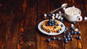 Waffles com mirtilo e copo do cacau Imagem de Stock Royalty Free