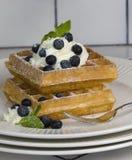 Waffles com uvas-do-monte e creme chicoteado Imagem de Stock