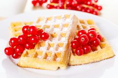 Waffles with currants Royalty Free Stock Photos