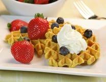 Waffles deliciosos Imagens de Stock