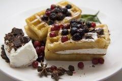Waffles deliciosos com bagas 15 Imagem de Stock Royalty Free
