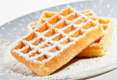 Waffles on a dish. Sugared waffles on a dish  on a white background Stock Images