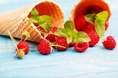 Waffles with fresh berry fruit and mint leaf. Waffles, fresh berry fruit and mint leaf Stock Photo