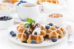 Waffles with fresh blueberries, cream and chocolate sauce Royalty Free Stock Photo