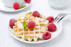 Waffles, fresh raspberries and almonds for breakfast. Waffles, fresh raspberries and almonds on the plate for breakfast Stock Image