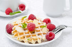 Waffles with fresh raspberries, almonds and mint Royalty Free Stock Photo