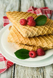 Waffles with fresh raspberries Stock Image
