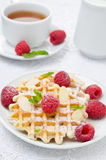 Waffles with fresh raspberries and nuts Royalty Free Stock Photography