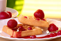 Waffles with fresh strawberries and currants, berry jam Stock Images