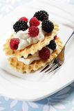 Waffles with fruits Royalty Free Stock Image