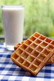 Waffles with glass of milk. On blue checkered tablecloth Stock Photos
