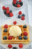 Waffles with ice cream and berries Stock Photos