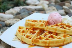Waffles with ice cream on a white plate. Royalty Free Stock Photo