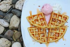 Waffles with ice cream on a white plate. Stock Image