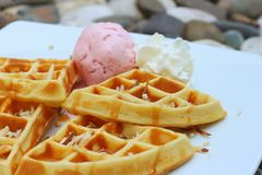 Waffles with ice cream on a white plate. Stock Photo