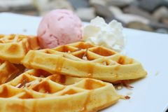 Waffles with ice cream on a white plate. Stock Photos