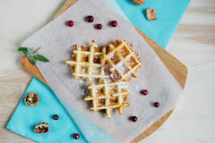 Waffles with icing sugar Stock Photography