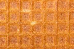 Waffles Liege Стоковые Фотографии RF