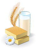 Waffles and milk Royalty Free Stock Images