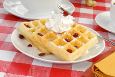 Waffles os carnberries secados witth Imagens de Stock