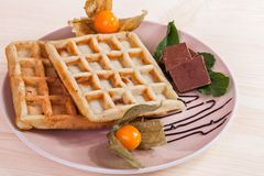 Waffles on a plate Stock Images