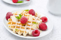 Waffles with powdered sugar, fresh raspberries and almonds. Close-up Royalty Free Stock Images